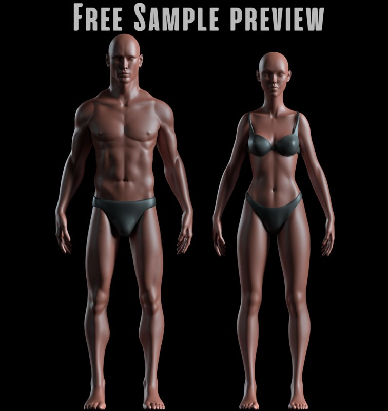 3D preview male female basemeshes
