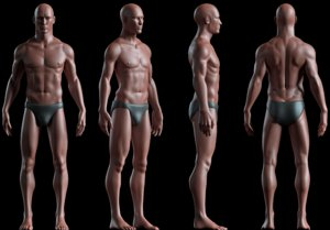 male basemesh realistic body 3D model