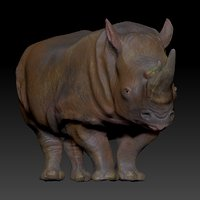 3D white rhinoceros l205 animate