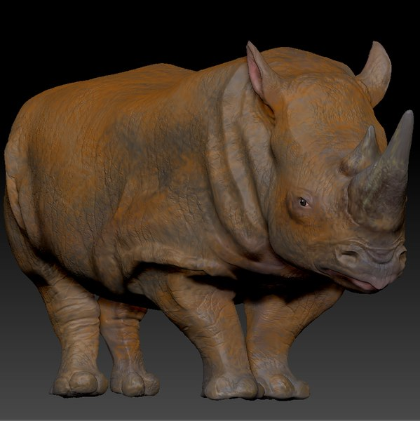 3D white rhinoceros l200 animate