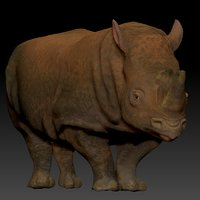 white rhinoceros l199 animate 3D model