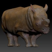 white rhinoceros l202 animate model