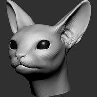 3D cat head base mesh model