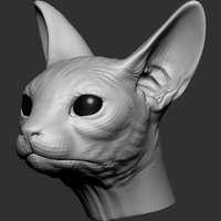 Sphynx Cat Head Base 2019