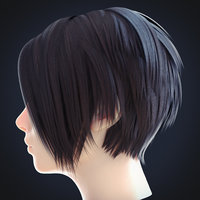 Female Hairstyle Low Poly 2