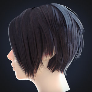 3D female hairstyle 2
