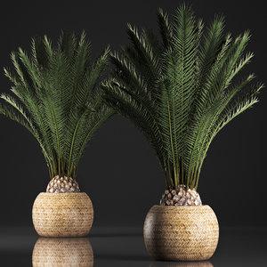 3D decorative palm tree pot