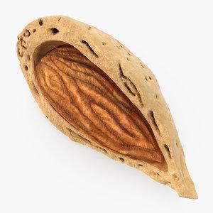 3D model broken almond shell