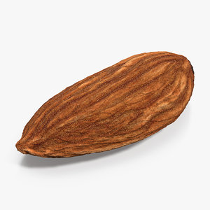 dry almond 3D