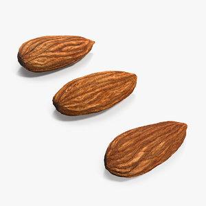 raw almonds set model