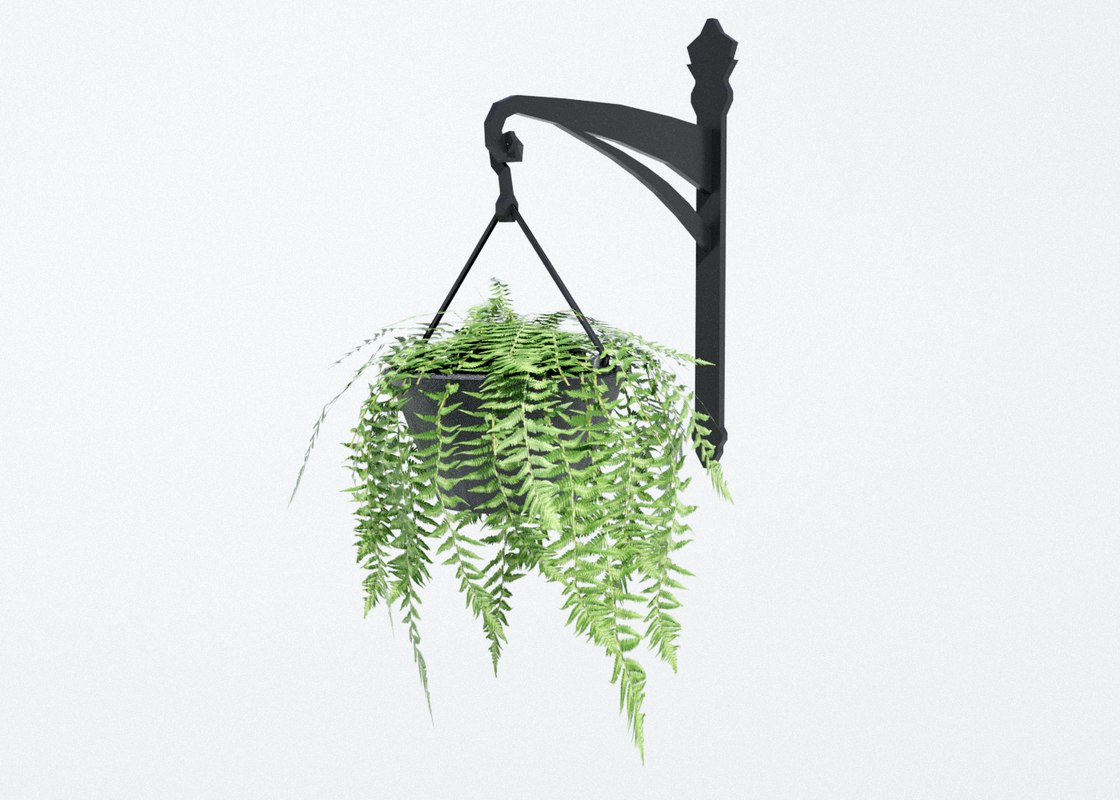 fern hanging pot 3D model