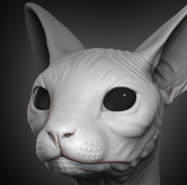 3D sphynx cat head 2019 model