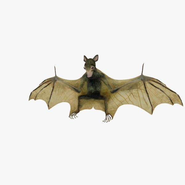 blender bat format 3D