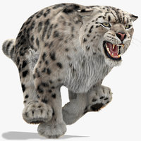 Snow Leopard 3 Animated Furry