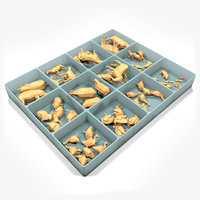box wooden animals toys 3D