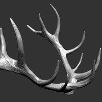 3D deer horns