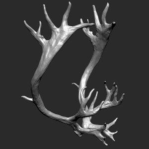 reindeer horns 3D model