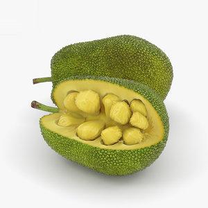 3D jackfruit jack fruit model