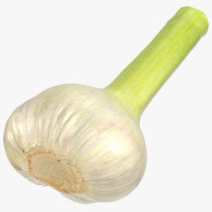 3D hardneck garlic 03