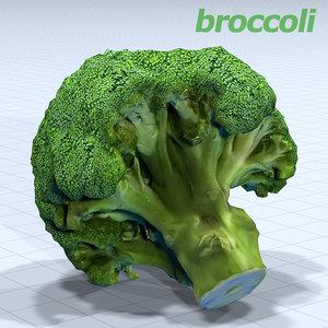 broccoli 3D model