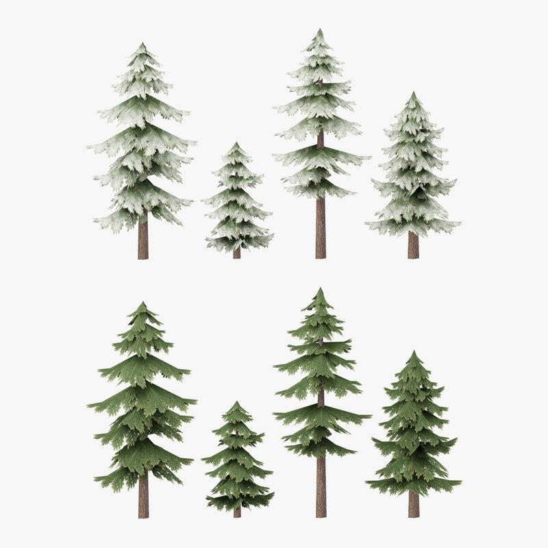 3D pine tree model