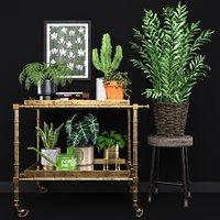 3D model plants indoor house