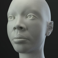 African Female Head