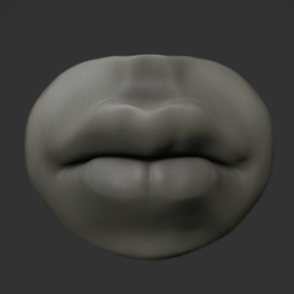 3D anatomy lip