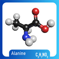 3D model c3h7no2 molecule alanine