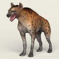 3D ready hyena