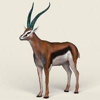 3D ready gazelle antelope