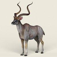 ready kudu antelope model