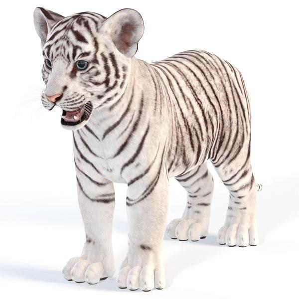tiger cub white 3D model