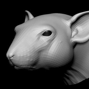 3D rat head base mesh model