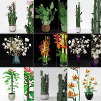 3D plant flowers model