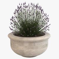 3d model decorative pot plant