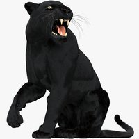 black panther fur 3D model