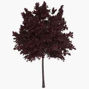 3D generic red tree