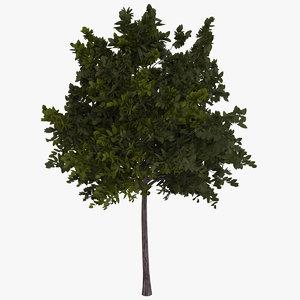 generic green tree 3D model
