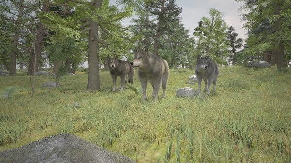 3D wolfs forest
