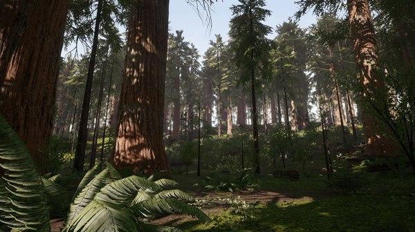 redwood trees ferns model