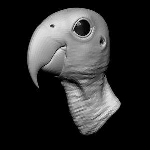 parrot head base mesh 3D model