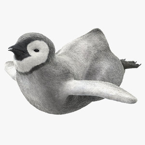 3D penguin baby swimming pose