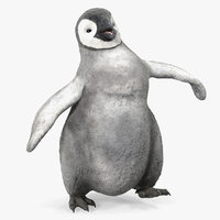 baby emperor penguin rigged 3D