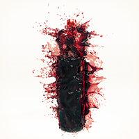 3D wine splash bottle 2
