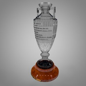 3D ashes urn men s