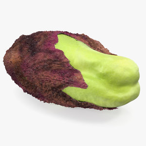 3D green pistachio seed model