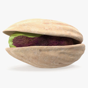 3D roasted opened pistachio model