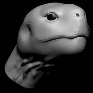 3D tortoise head base mesh