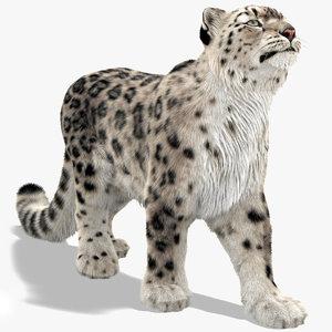 3D snow leopard furry fur animal